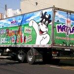 truck-adesivado